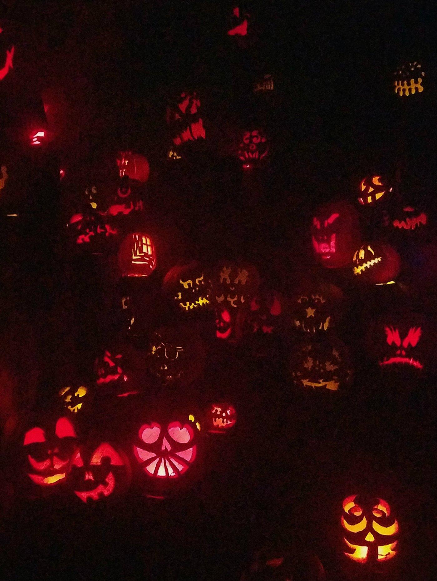 it's the great pumpkin… – blondie birdie